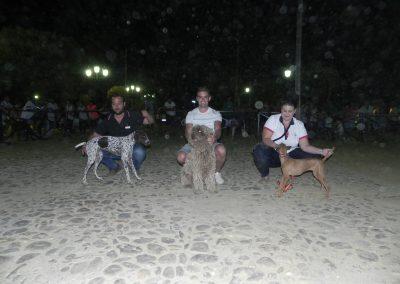 concentracion-canina-2