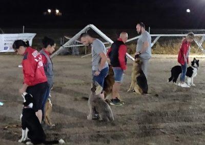 Jornada Canina 4
