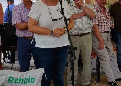 Rehalas en Villaviciosa 4